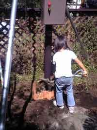 20060910nemakina.jpg